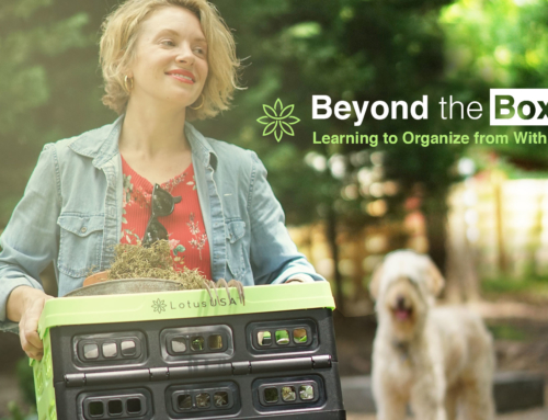 Beyond the Box  (Learning to Organize from Within)